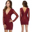 Sexy Lace Deep V-Neck Hollow Out Dress