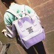 Leisure Pink Embroidery Rose Square Multi-function Handbag Solid School Canvas Backpack