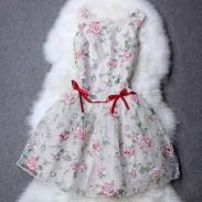 Waist  Bowknot  Flower Print Organza Dress