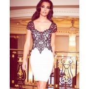 Graceful Sexy Crochet Lace Bodycon Backless Dress