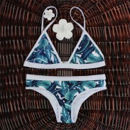 Sexy Print Bikini Push-up Triangle Swimsuits Bikini Set For Woman
