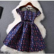Fashion Printing Wave Point Slim Dress
