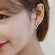 Fashion Women's Sterling Silver Wild Star Zircon Earrings Studs