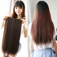 Natural 20 Inch Clip Straight Hair Extensions