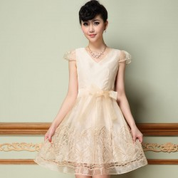 Elegant Organza Hollow Out Embroidery Dress