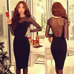 Sexy Gauze Backless Long Sleeve Dress
