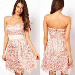 Fashion Pink Hollow Out Embroidery Lace Strapless Dress