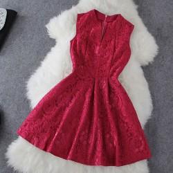 Sexy V Collar Elegant Slim Lace Dress