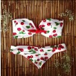 Cherry pattern Swimwear Swimsuit Bikini Set