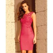 Vestido de encaje elástico bordado en rojo rosa