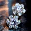 Süße Edelweiss Zircon Silber Ohrstecker Ohrringe