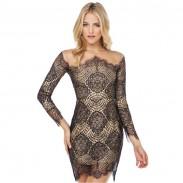 Reizvoller Durchlässig Spitze Grenadine Langarm Kleid / Partei Kleid