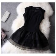 Elegantes schwarzes Organza-Spitze-Kleid-Partei-Kleid